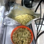 Hops ready for the brew